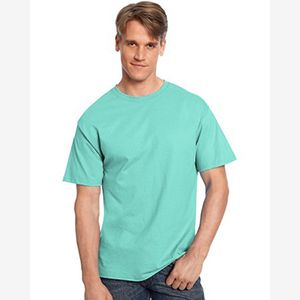 6.1 oz. Tagless® T-Shirt Thumbnail